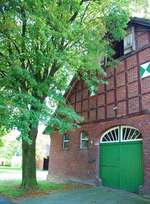 Unter der Spitze des Daches ein geöffnetes Fenster, darunter außen sichtbare Holzbalken, breites grünes Tor.