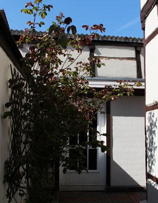 Hinterhof eines Gebäudes mit Blick auf eine Pflanze und ein Gebäude mit sichtbaren Holzbalken.