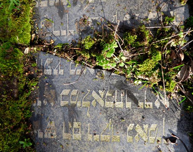 zweigeteilter Grabstein mit hebräischer Schrift, an Bruchstelle Moos und weiteres Unkraut. Darunter ein ebenfalls zerbrochener Grabstein, bemoost.