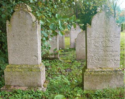 Paarweise Grabsteine in einer länglichen Reihe auf grünem Untergrund, verschiedene Pflanzen an der Seite der Grabsteine.