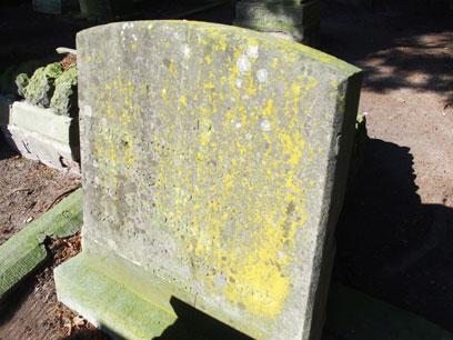 Bemooster Grabstein auf Erdfläche dessen eingemeißelte Inschrift noch leicht erkennbar ist.